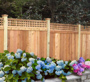 Cedar fence with Lattice